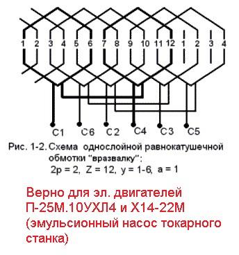 схема однослойного эпителия